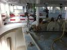 Fräs- und Seilsägearbeiten_12